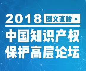 2018中国知识产权保护高层论坛